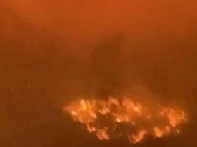 Огонь охватил свыше 1 млн гектаров: в Якутии продолжают гореть леса