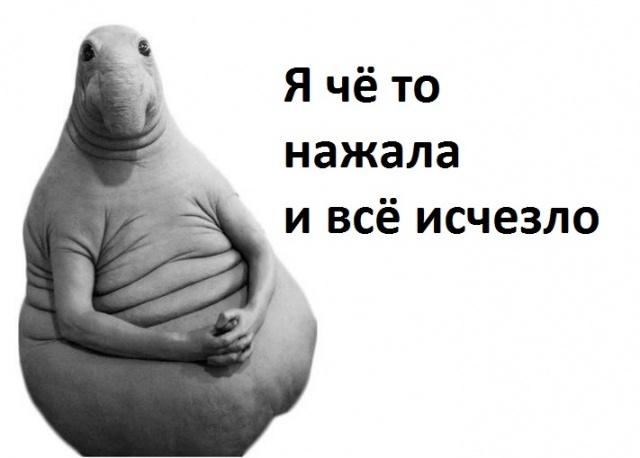 Создать мем Диана шурыгина генератор мемов  Рисовач Ру